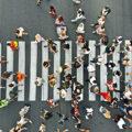 EARS - Public crossing