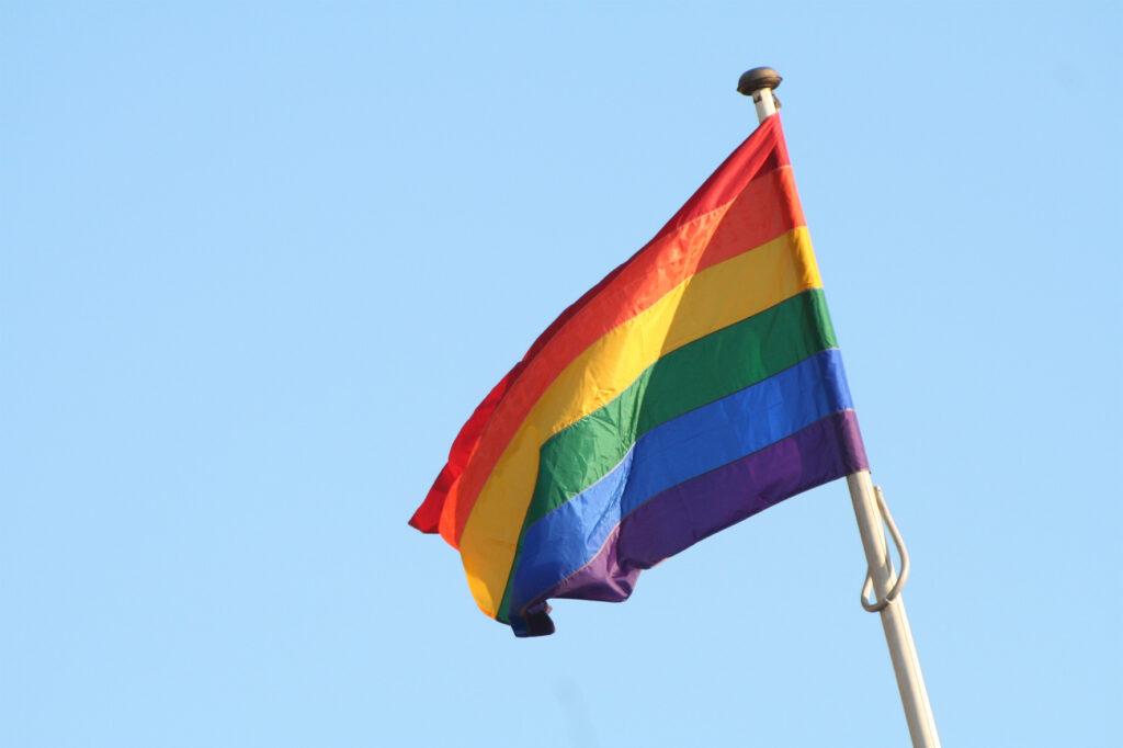 EARS - LGBTQI flag
