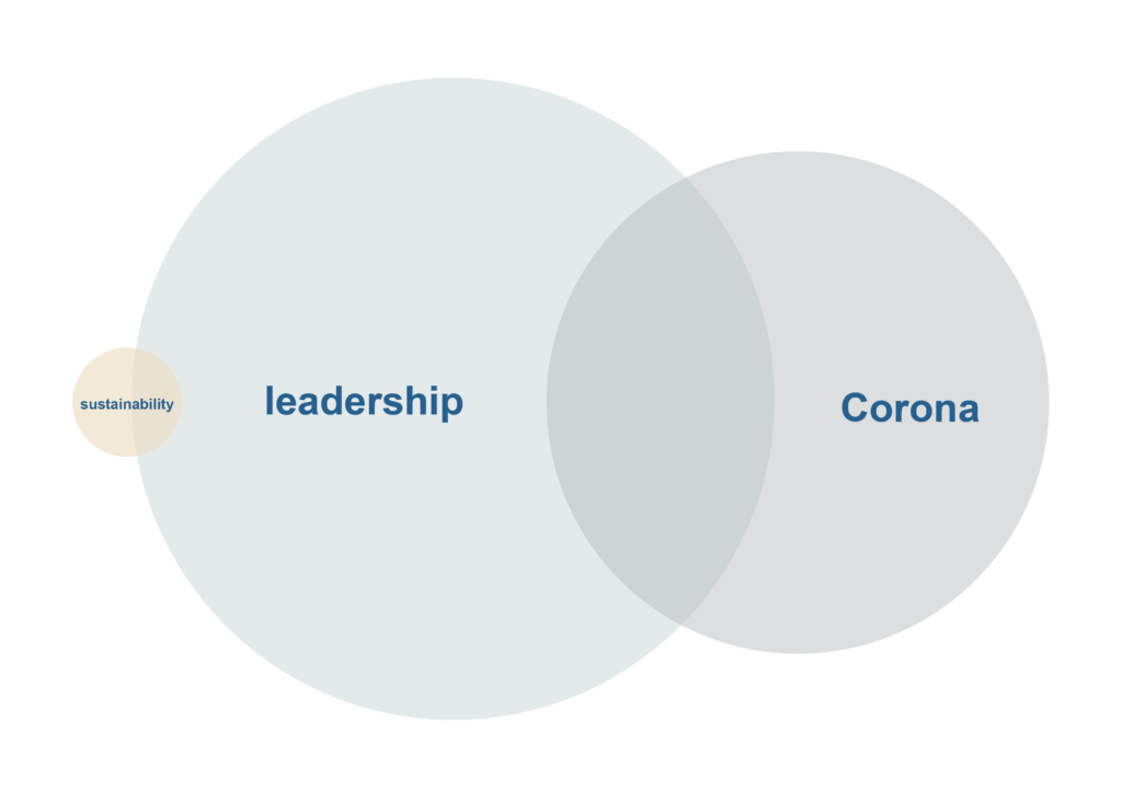 Sustainibility, leadership and corona