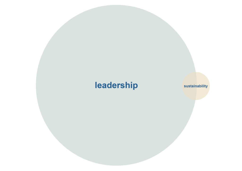 Leadership and sustainibility
