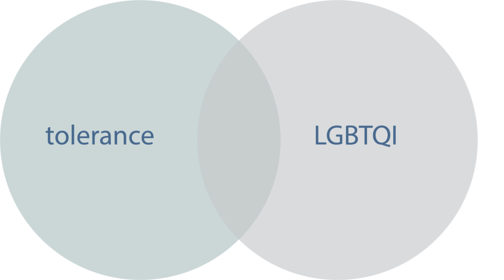 Insights from the dashboard: LGBTQI and tolerance