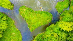 Ecology religious gift environmentalism